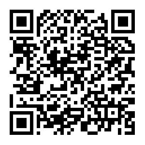 手机APP下载安卓