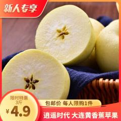 逍遥时代 大连黄香蕉苹果3斤装(5-7枚)