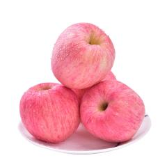 山东栖霞红富士苹果精选一级大果单果80#起 多规格可选 中果5斤装