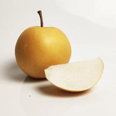 【时令必吃水果】山东聊城冰糖丰水梨精选一级大果 5斤简装 大果5斤装